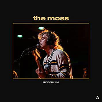 the moss on Audiotree Live