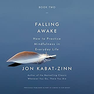 Falling Awake audiobook cover art
