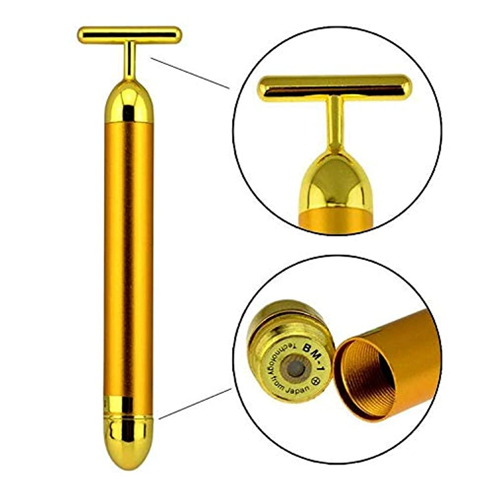 豊富な指紋経済的24k金美棒、電子顔のローラーの防水マイクロ振動のマッサージャー