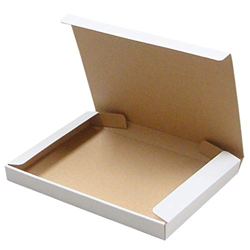 DVD入れ箱【1枚入用】【白】 20個セット (N式 ダンボール箱 段ボール箱 梱包 ダンボール 宅配箱 組み立て式 組立式 折りたたみ式 折り畳み式)