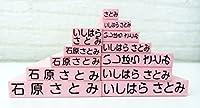 お名前スタンプセット【兄弟セットBピンク】入園、入学準備 入園準備