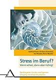 Stress im Beruf? Wenn schon, dann aber richtig!: Der Ratgeber für den intelligenten Umgang mit Stress-Situationen