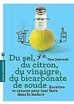 Du sel, du citron, du vinaigre, du bicarbonate de soude de Shea Zukowski