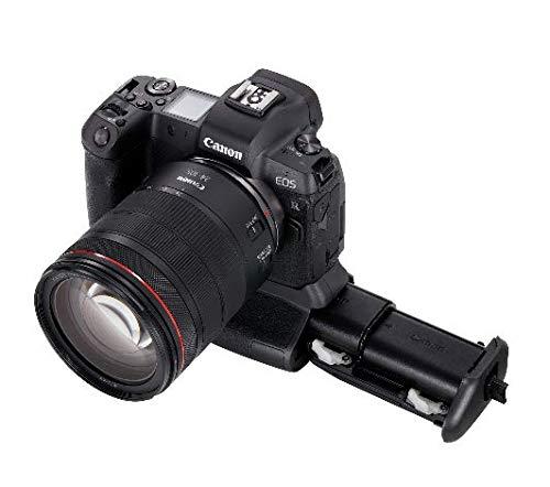 Canon BG-E22