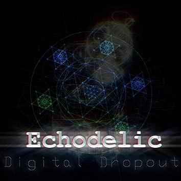 Digital Dropout