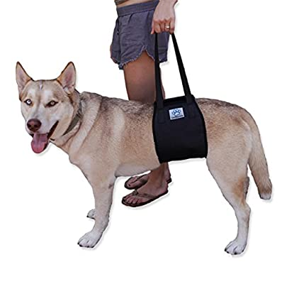 Vet Approved Dog Lift Support Harness for canine aid. Lifting Older K9 with handle for Injuries, Arthritis or Weak hind legs & Joints. Large / X-large breed Assist Sling for mobility & Rehabilitation