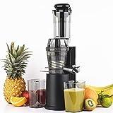 H.Koenig GSX16 - Estrattore di succo di frutta e verdura verticale 60 rpm, tecnologia lenta spremitura, Funzione reverse, BPA FREE, 0,8L, 320W