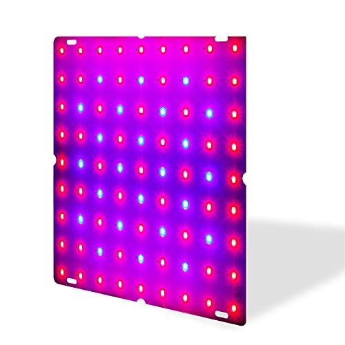 Lámpara LED para Plantas De Interior, Espectro Completo, para Plantas, Hidropónica, Invernadero, Plantas Suculentas, Flores (25W-81 LED)