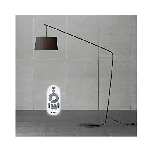 YLJYJ Lámpara de pie para Pesca, lámpara de pie de Metal de Estilo Moderno y conciso con Control Remoto, LED fgzla Regulable (Silla)