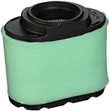 Briggs & Stratton 792105 Extended Life Series Air Filter Cartridge,Green