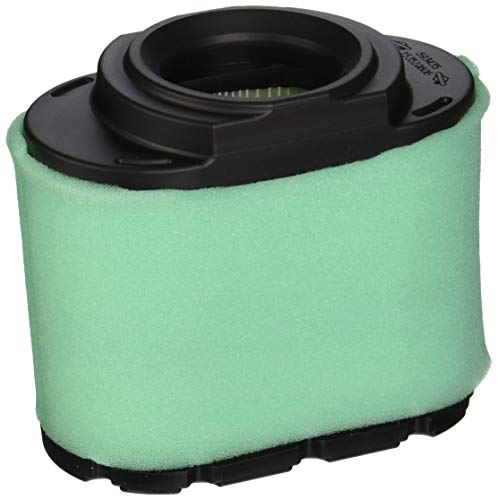 Briggs & Stratton Genuine Extended Life Series Air Filter Cartridge with Pre Cleaner
