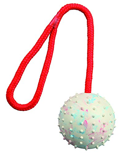 Trixie 3308 Ball am Seil, Naturgummi, ø 7/30 cm