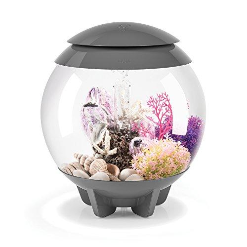 biOrb HALO 15 Aquarium with MCR Lighting - 4 gallon, Grey (45653)