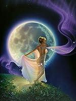 大人のためのDIY5Dダイヤモンド絵画キットフルドリル刺繡絵画ラインストーン貼り付けDIY絵画家の壁の装飾のためのクロスステッチアート工芸品月と妖精の女の子45x60cm