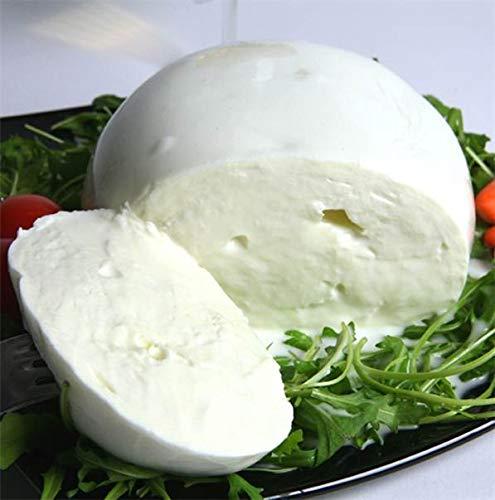 Mozzarella 'La Villanella' di latte di Bufala