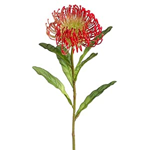 26″ Silk Open Needle Protea Flower Spray -Coral (Pack of 12)