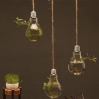 Best hanging light bulb vase Reviews