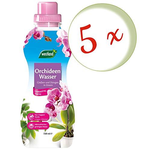 Sparset: 5 x WESTLAND® Orchideen Wasser, 720 ml