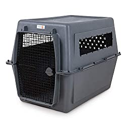 airline approved Aspenpet Pet Porter Kennel for large dogs