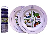 Melamine Plate Portion Control Plate 10' Inch & 100 Cal Snacker For Weight Loss Plate, Diabetes Plate And Healthier Diet Plate Adult Portion Plates
