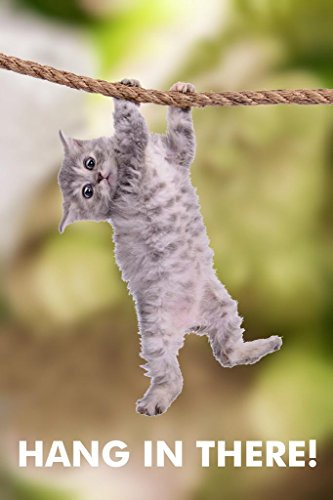 Hang in There Cat Retro Motivational Cubicle Locker Mini Art Poster for Office 8x12