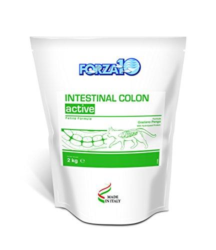 Force 10 Neutraceutic Intestinal Colitis Chat - 2 kg