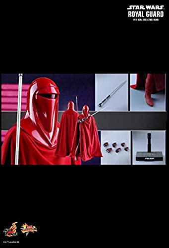 Hot Toys MMS469 - Star Wars 6   Return of The Jedi - Royal Guard
