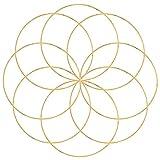 8 Piezas Floral Grande de Metal Aros de Metal Aros de Metal para Atrapasueños Espesor 35 mm para Coronas de Bricolaje, Coronas de Boda, Atrapasueños y Manualidades para Colgar en la Pared(20cm/7.87in)
