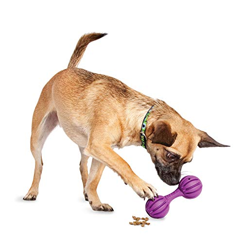 petsafe chew toys for dogs PetSafe Busy Buddy Waggle Treat Dispensing Dog Toy – Small, Medium/Large, BB-WAG-S, Purple