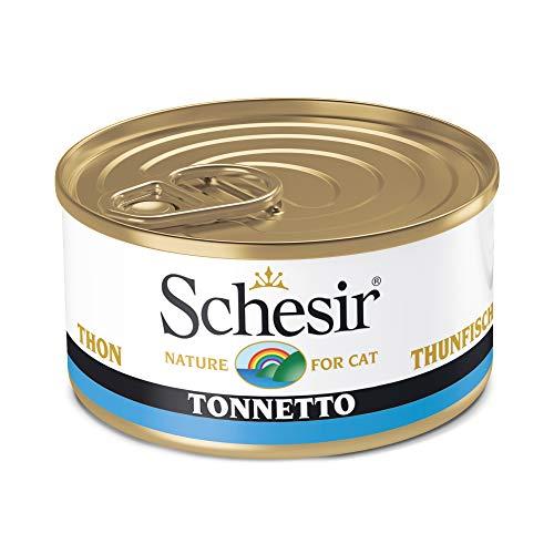 Schesir Cat Jelly Thunfisch, Katzenfutter nass in Gelee, 24 Dosen x 85 g