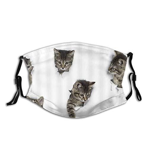 KOSALAER Face Cover Schöne Katze im Hintergrundbild Loch Spaß Tiere Eine Gruppe von niedlichen Kätzchen 3D Art Design Pet Picture Wiederverwendbare Anti-Staub-Mund-Bandanas mit 2 Filtern
