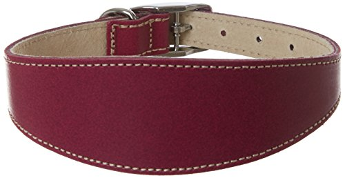 BBD Pet Products Windhund Deluxe Halsband, Boysenbeere