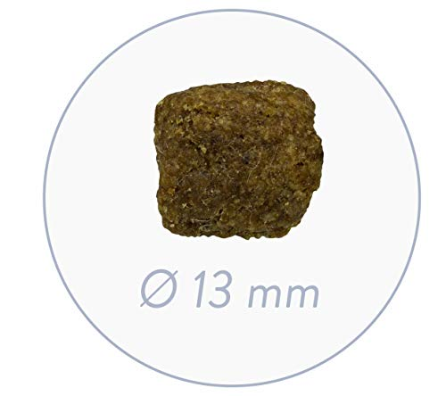 bosch Hundefutter Adult Geflügel und Hirse, 1er Pack (1 x 15 kg) - 3