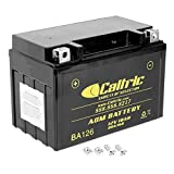 Caltric compatible with Agm Battery Suzuki...