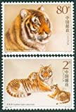 Julo 2Pcs / Set New China Post Stamp Southern China Tiger Stamps MNH