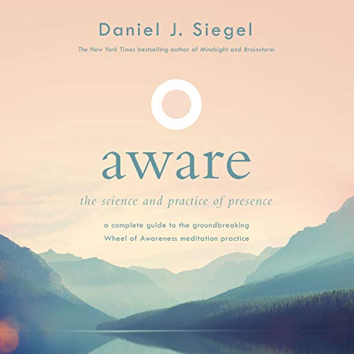 Aware audiobook cover art