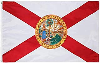 Best 5 flags of florida Reviews
