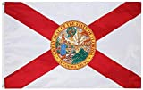 State of Florida Flag. 3x5 Feet Digitally Printed Nylon Flag. 200D Oxford Nylon. Double Layered with Shade Cloth