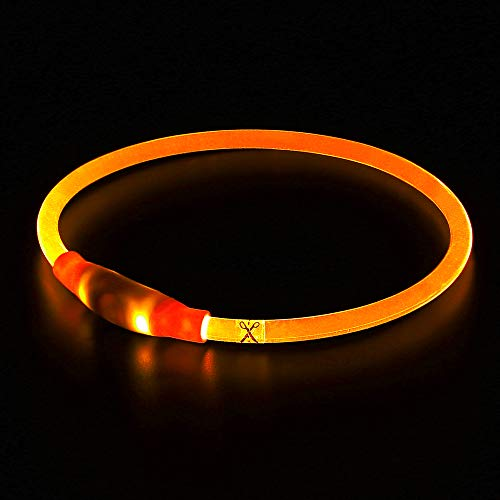 BSEEN LED Dog Collar, USB Rechargeable, Glowing pet Dog Collar for Night Safety, Fashion Light up Collar for Small Medium Large Dogs (Orange)