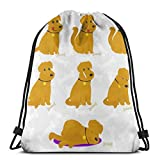 BXBX Plegable Bags Funny Dogs Set Gym Sack Water Resistant Bag School Bag Backpack,Perfect for School,Sports,Beach,Books & Travel