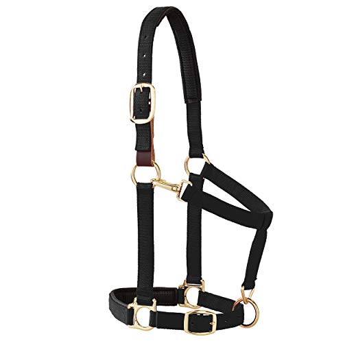 Weaver Leather Padded Breakaway Adjustable Chin & Throat Snap Halter, 1' Average Horse or Yearling Draft