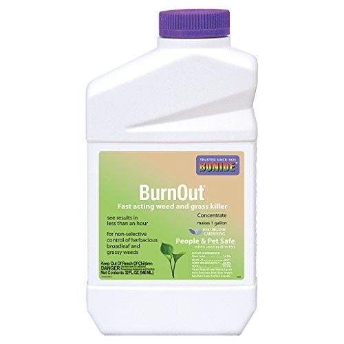 Bonide BurnOut Weed & Grass Killer Concentrate, qt
