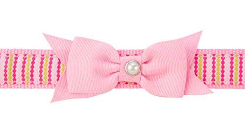 Martha Stewart Pets Allie Dot Dog Collar~X-LARGE~