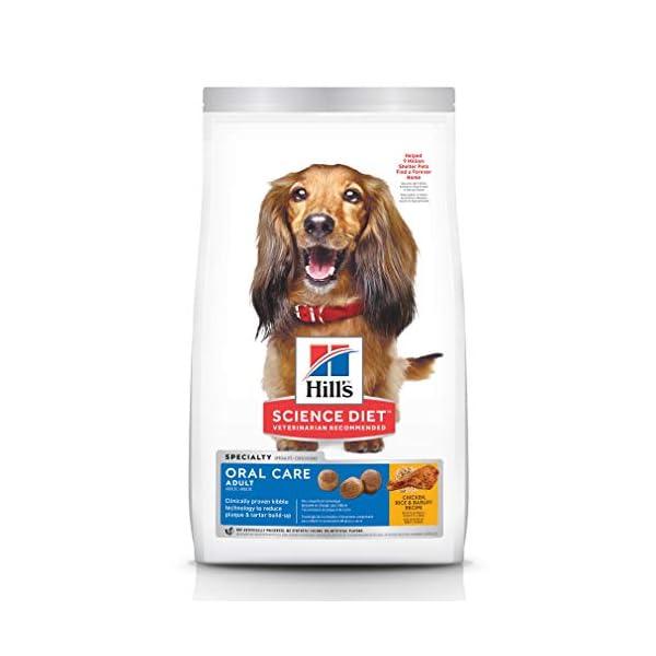 Hill's Science Diet Dry Dog Food, Adult Oral Care for Dental Health Dog Food,...