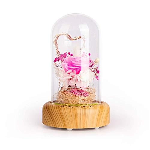 LEISONT - Deseo transmisión botella de luz led pequeña lámpara de noche eterna flor Bluetooth altavoz lámpara de mesa regalo de San Valentín Flores inmorales