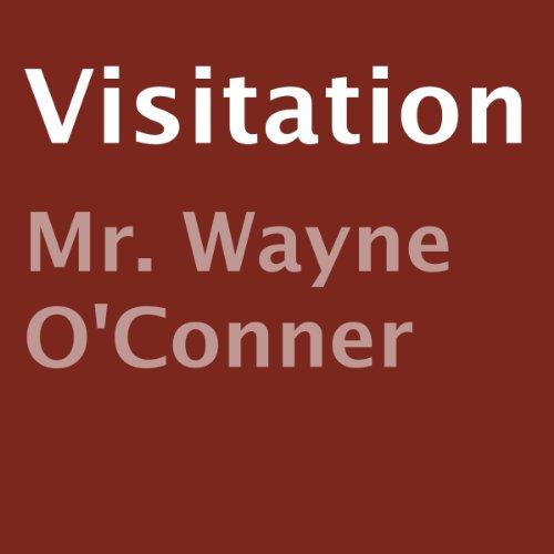 Visitation audiobook cover art
