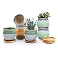T4U Ceramic Succulent Plant Pot with Bamboo Tray Pack of 6 - Summer Trio Green Small Planter Pots Ha...