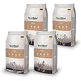 Venandi Animal - Pienso seco para gatos - 1*Pollo, 1*Ternera, 1*Salmón, 1*Cordero - Completamente libre de cereales - 4 x 1.5 kg
