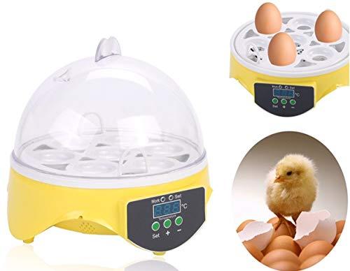 Couveuse automatique Couveuse Incubateur 7 œufs Automatique Intelligent Numérique Appareil d'Incubation Eclosion de Poussin, Affichage LED, 20W, Température réglable