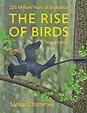 Chatterjee, S: Rise of Birds - Sankar Chatterjee